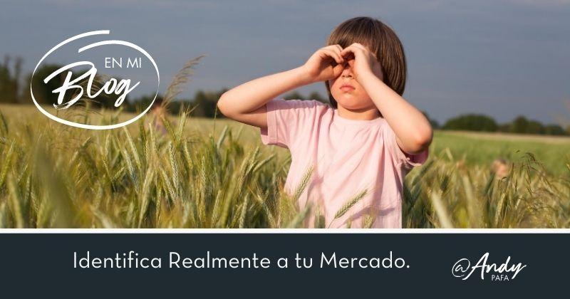 Identifica_Realmente_a_tu_Mercado