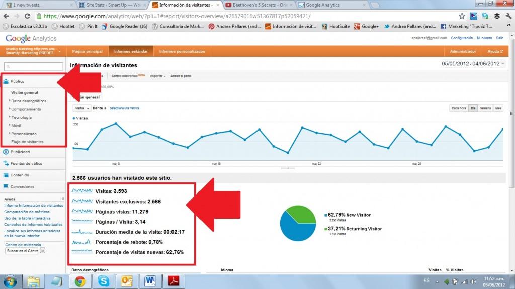 Google Analytics Público 1
